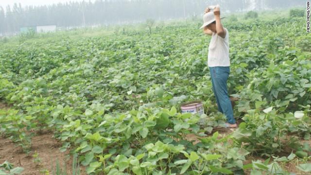 china sinkhole5 10万人が強制移住した、水没していく炭鉱の町…
