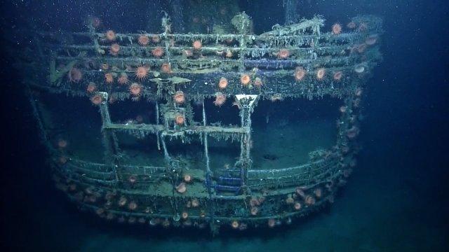 Cnn Co Jp 並んで眠る米船と独uボート、70年の時を経て深海調査