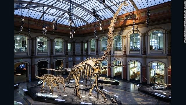 CNN.co.jp : 世界の恐竜博物館10...