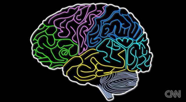 アルツハイマー病新薬、脳のたんぱく質除去に効果 英誌