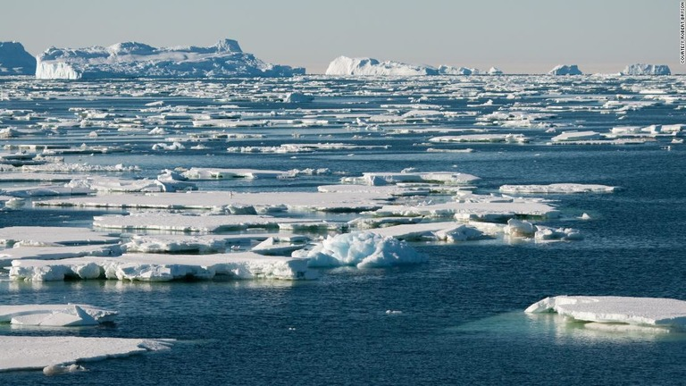 南極融解、対策皆無なら深刻な脅威に 科学者がシナリオ提示