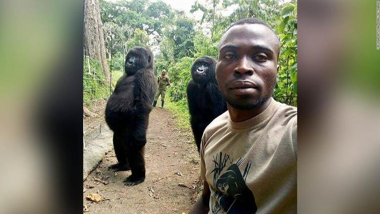 ゴリラの「ンダカジ」と「ンデゼ」がパークレンジャーの自撮り写真