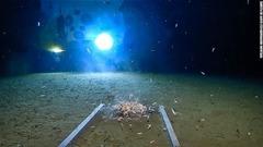 CNN.co.jp : 1万メートル超の深...