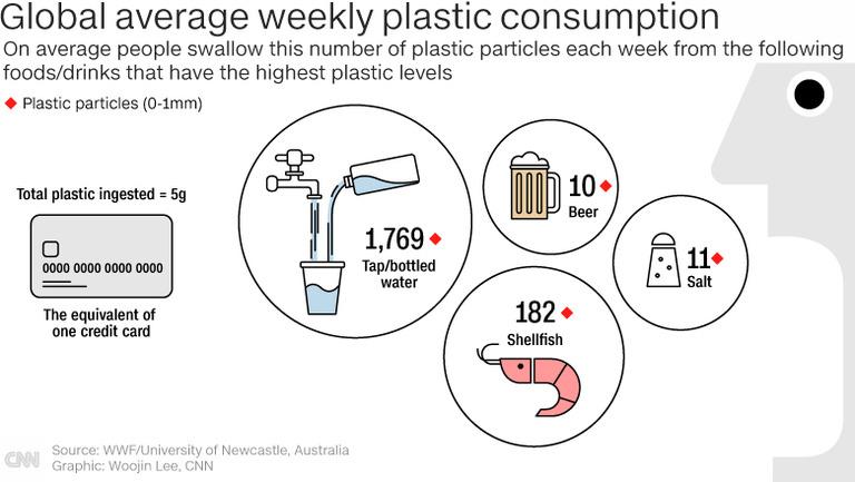 微小なプラスチック片を週に5グラム、クレジットカード1枚分摂取しているとの研究結果が出た。平均で飲み水から1769粒、貝類から182粒飲み込むという