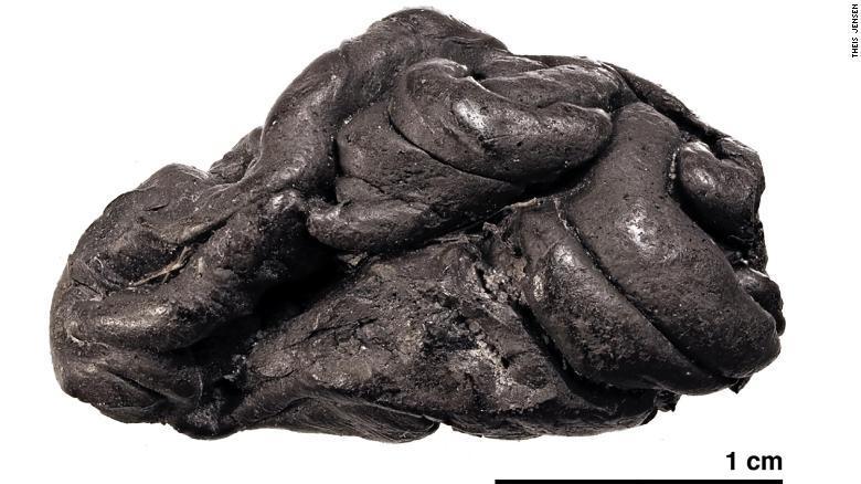 デンマーク南部の遺跡で見つかったカバノキの樹脂/Theis Jensen