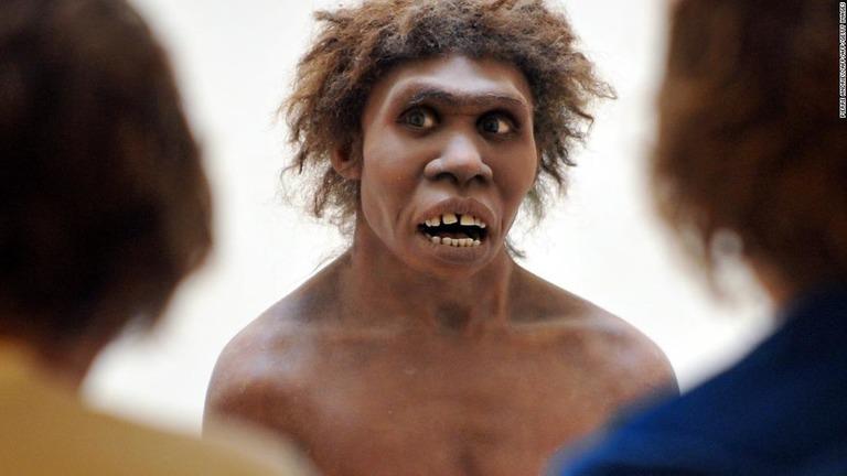 CNN.co.jp : ネアンデルタール人のDNA、アフリカの現生人類からも ...