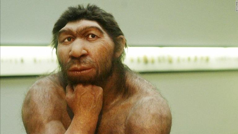 CNN.co.jp : 太古の西アフリカに「幻の人類」、証拠見つかる 現代人の ...